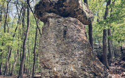 Каменные грибы в с. Дружное в Крыму